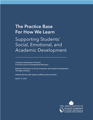 Commission Report: The Practice Base for How We Learn